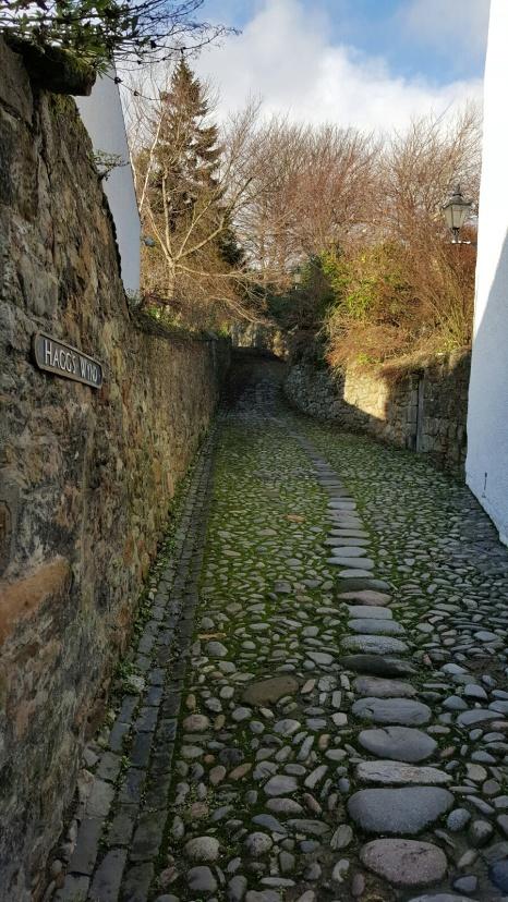 Scenic paths around town